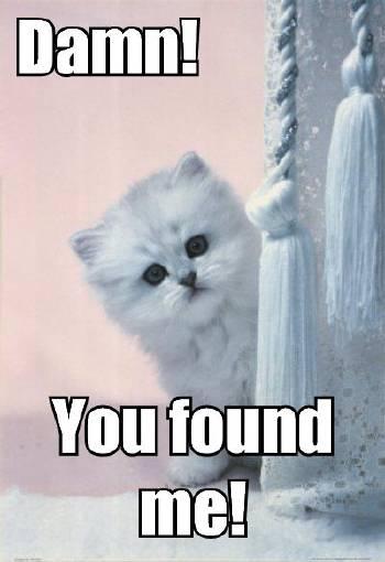 damn-you-found-me.jpg