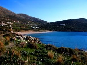 Delfini, Syros